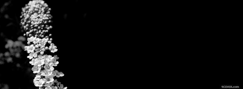 غلاف فيس حزين 2019 غلاف أسود حزين 2019 Black Casing