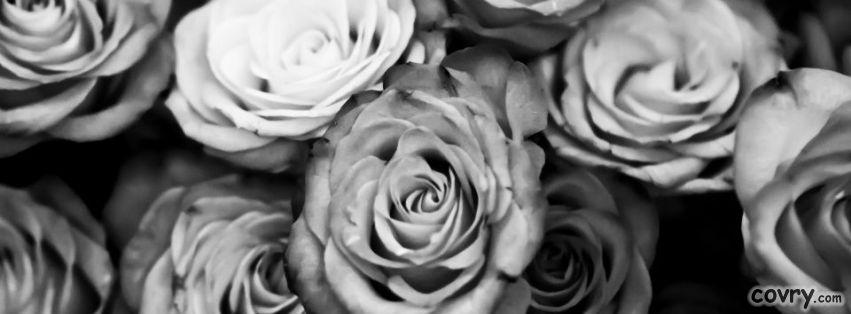 roses-black-and-white.jpg
