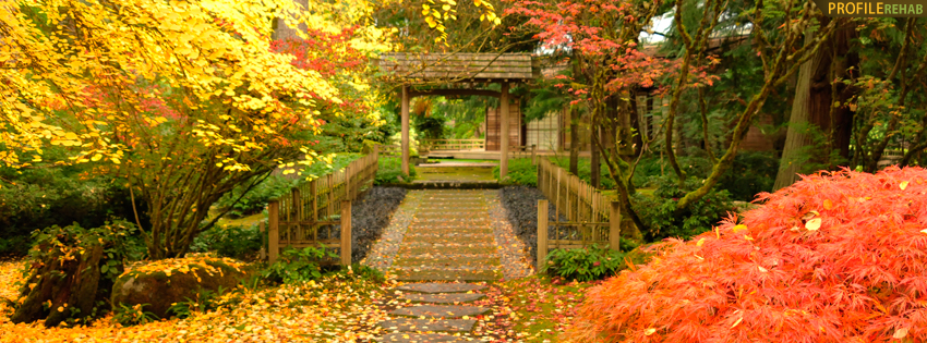 fall_walkway_cover_21.jpg