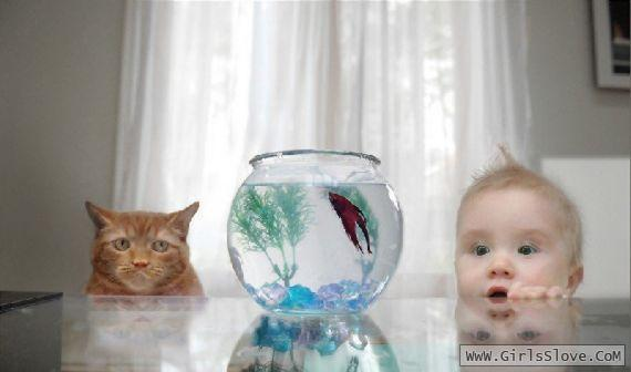 photolovegirl.com1373123946179.jpg