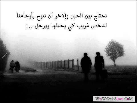 1369604679596.jpg