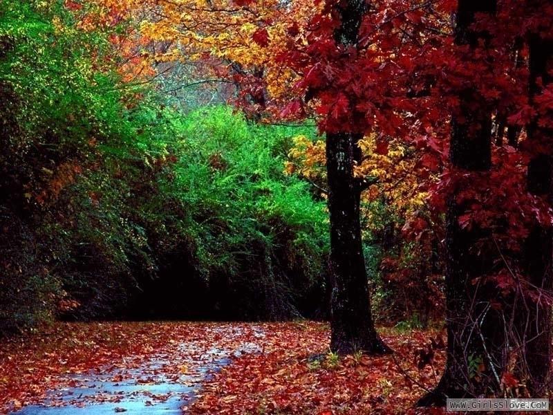 photolovegirl.com13735722283110.jpg