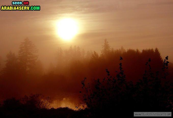 photolovegirl.com1373665527252.jpg
