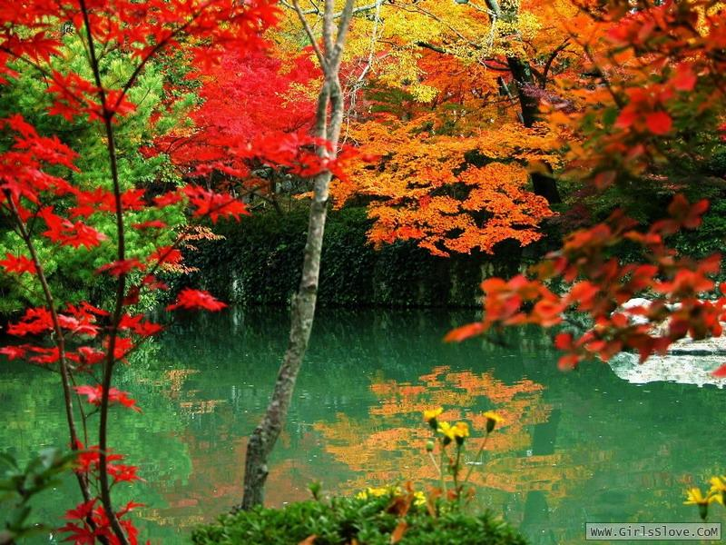 photolovegirl.com1373664936944.jpg