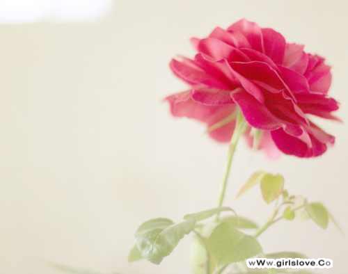 photolovegirl.com1373860062455.jpg