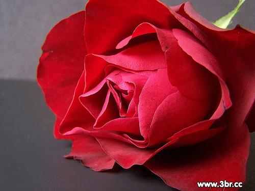 photolovegirl.com1370787003881.jpg