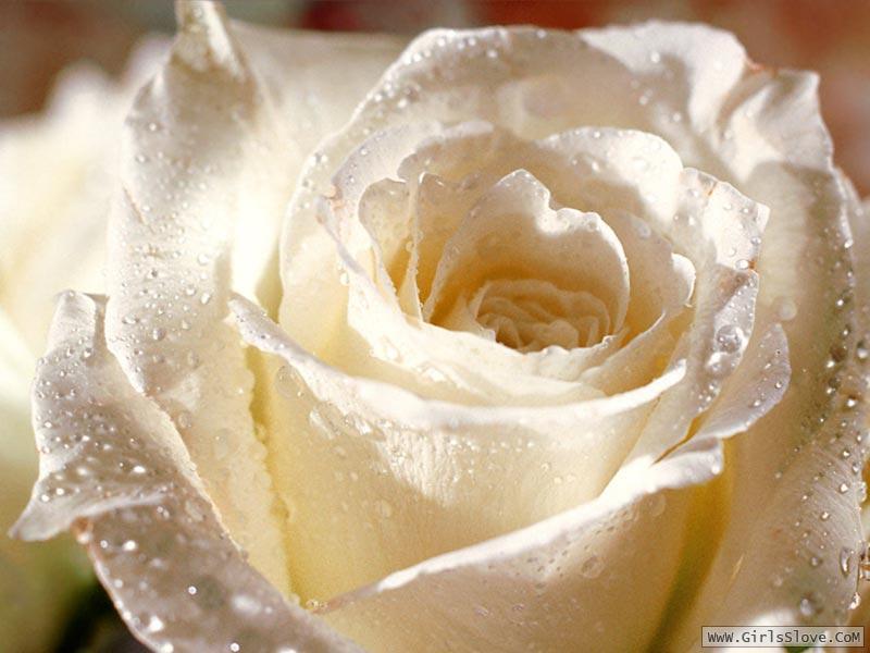 photolovegirl.com1370787004228.jpg