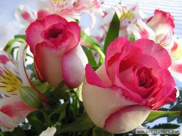 photolovegirl.com13707870045913.jpg