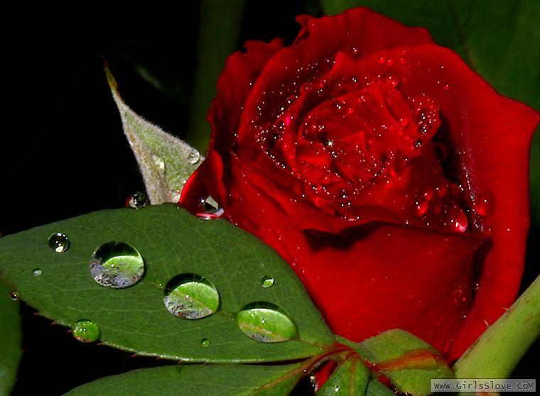photolovegirl.com13707870046715.jpg