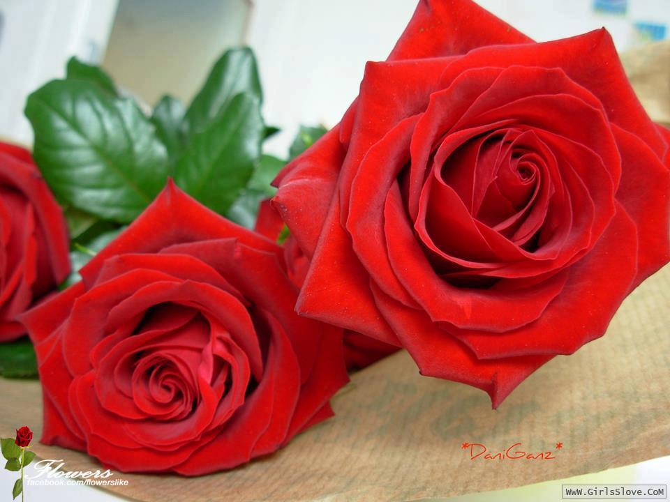 photolovegirl.com1370787575435.jpg