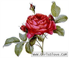photolovegirl.com13707875760910.jpg