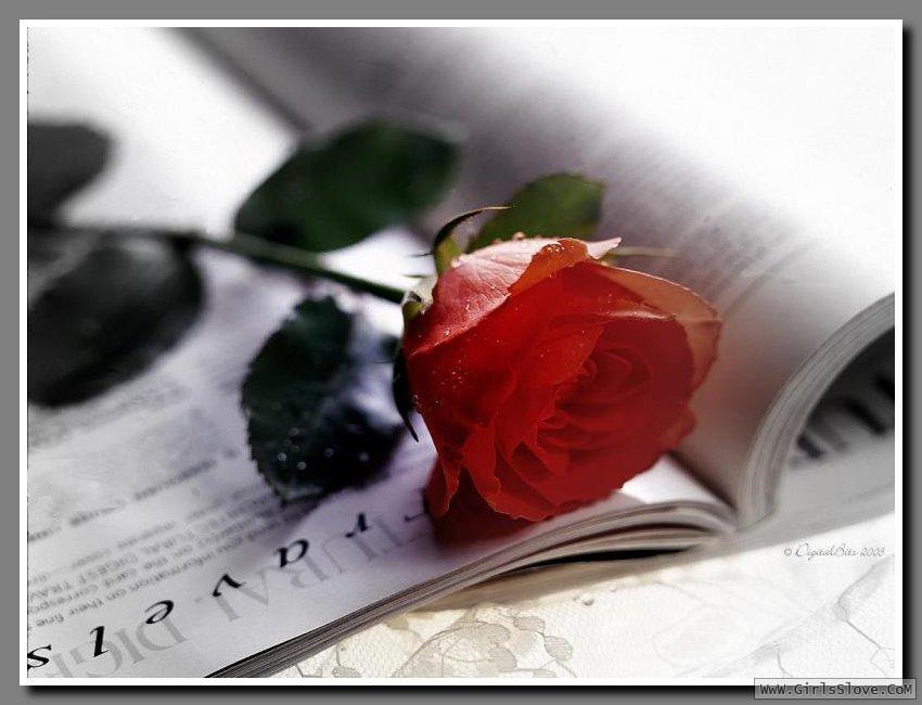 photolovegirl.com13707875761111.jpg