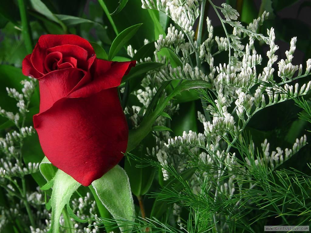 photolovegirl.com13707875761812.jpg