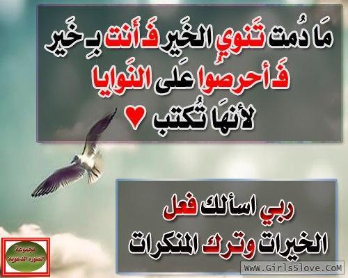 photolovegirl.com1370788970316.jpg