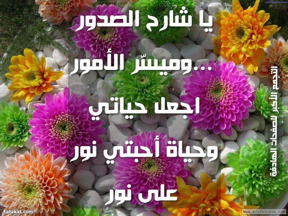 photolovegirl.com13707889705813.jpg
