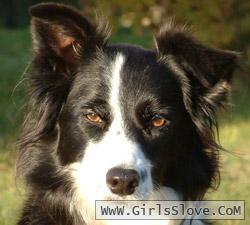 photolovegirl.com1371339041821.jpg
