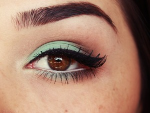 aqua-brown-makeup.jpg